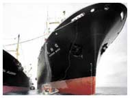 SHIPPING INDUSTRY SKIRTBOARD RUBBER